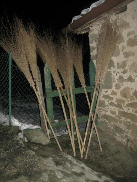 brooms - photo Maureen Halson