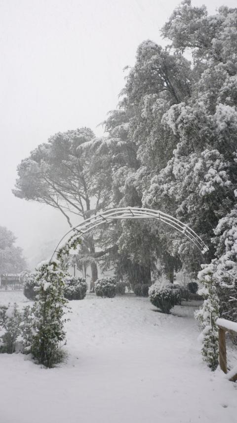Villa Fiori Garden