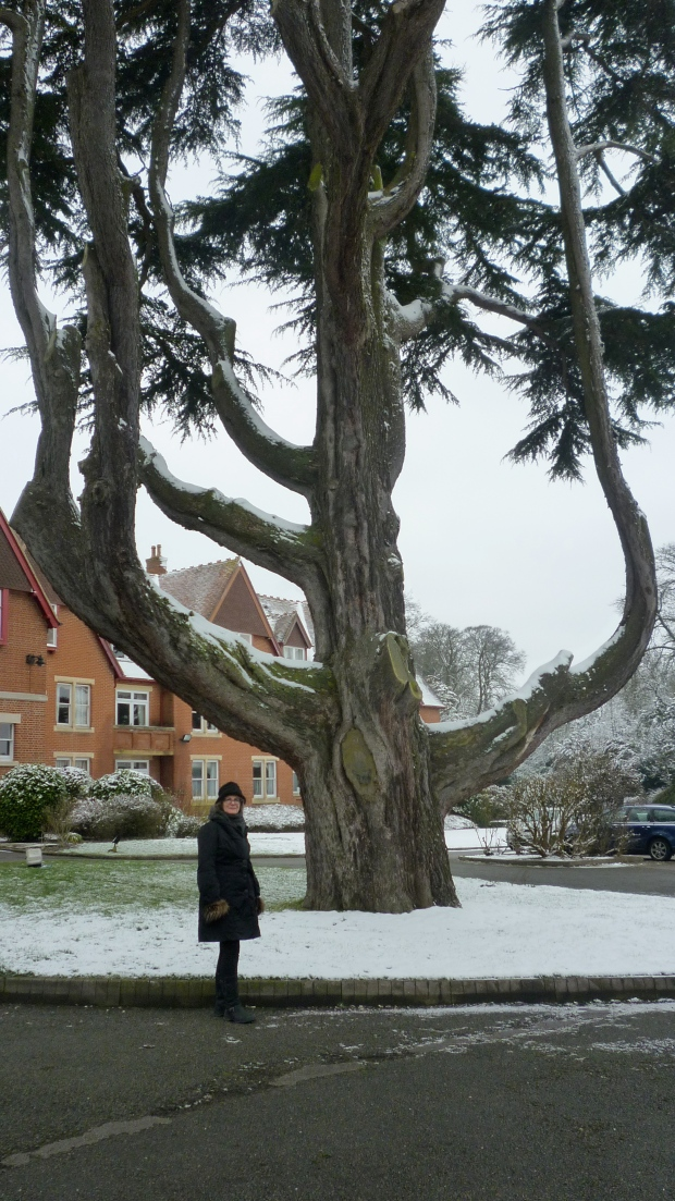 Pendley Manor in Tring