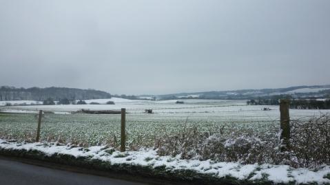 Fields around Aldbury