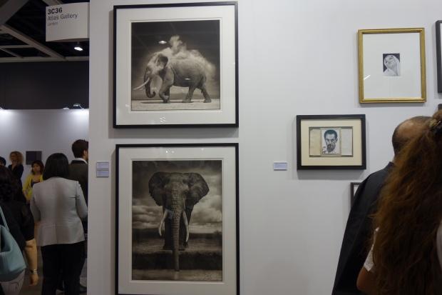 """Nick Brandt - 'Elephant Drinking, Amboseli"""" 'Elephant with Exploding dust, Amboseli'"""