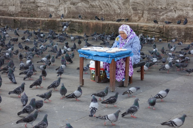 Old lady selling food for the birds