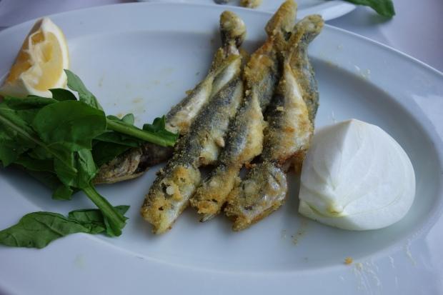 fresh sardines